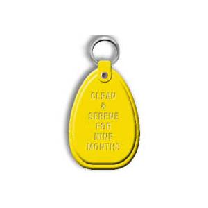 Yellow 9 Month Keytag
